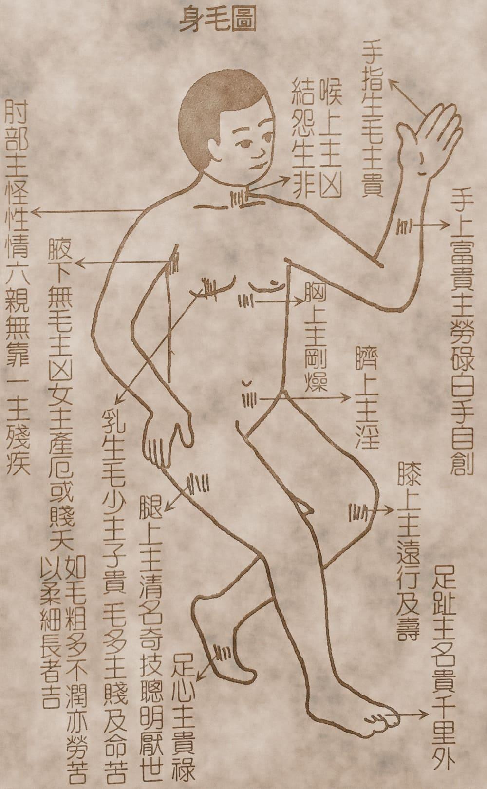 相法古籍精選(身體、陰部)